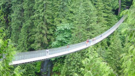 Εσείς θα περνούσατε από αυτές τις... τρομακτικές γέφυρες;