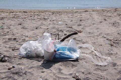 Εκστρατεία καθαριότητας εθελοντών στην Αλόννησο