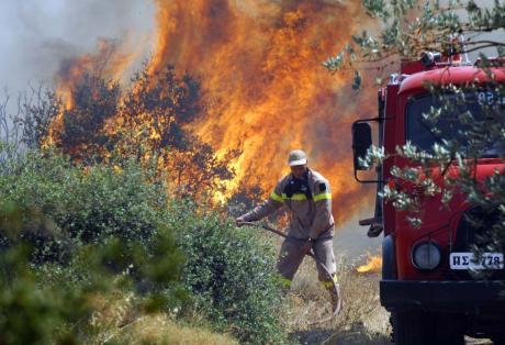 Τρίκαλα: Πυρκαγιά έκαψε 20 στρέμματα στη Χρυσομηλιά