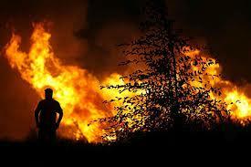 Μεγάλη φωτιά στη Γλώσσα