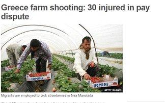 Διεθνής διασυρμός για τις «ματωμένες φράουλες»