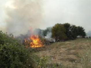 Κάηκαν ξερά χόρτα