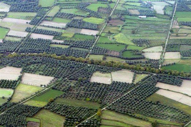 Αποτέλεσμα εικόνας για αγροτεμαχια
