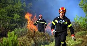 Πανθεσσαλική σύσκεψη για τις δασικές πυρκαγιές