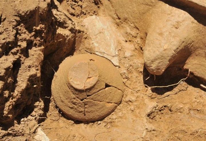 Επαναπατρίζονται αρχαιολογικοί θησαυροί από την περιοχή Βελεστίνου