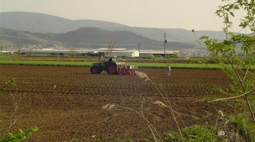 Από τα μέσα Σεπτεμβρίου οι εντάξεις αγροτών στο πρόγραμμα για τη μείωση της νιτρορύπανσης