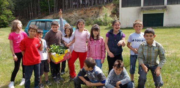 Ο κήπος του δημοτικού σχολείου στη Βερδικούσα