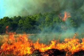 Φωτιά στην Άνω Κερασιά