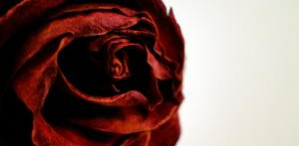 Ροζ «περιπέτεια» για Τρικαλινό αυτοδιοικητικό!