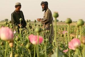 Σήμα κινδύνου του ΟΗΕ για το Αφγανιστάν