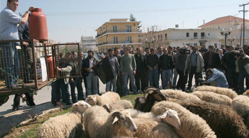 Στους δρόμους βγαίνουν οι κτηνοτρόφοι