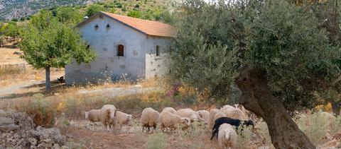 Eξαιρούνται από τον φόρο τα αγροτικά κτίσματα