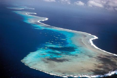Αυστραλία: Τσουνάμι από αστερίες απειλούν το Μεγάλο Κοραλλιογενή Υφαλο