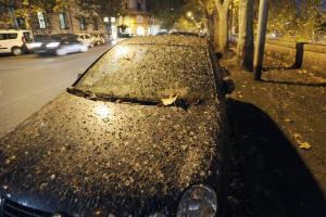 Θάφτηκε στις κουτσουλιές η Ρώμη – Με ομπρέλες κυκλοφορούν οι κάτοικοι