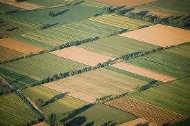 Ενδιαφέρον για την εκμίσθωση αγρών από δημότες