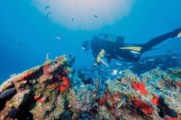 Υποβρύχια εκθέματα με ιστορικά ναυάγια