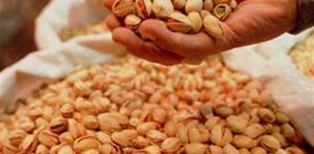 Λάρισα: Ημερίδα για την δυνατότητα ανάπτυξης ξηρών καρπών στη Θεσσαλία