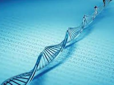Ανακάλυψη δεύτερου κώδικα DNA από Έλληνα γιατρό