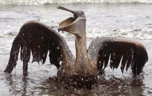 Μη επανδρωμένα σκάφη στη μάχη της απορρύπανσης του Κόλπου του Μεξικού