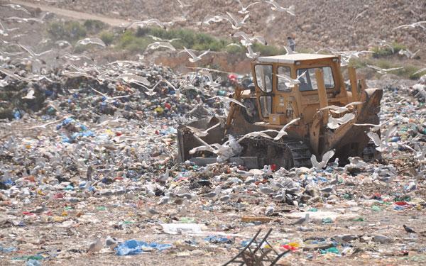 Κύπρος: Βρέφος σε κατάσταση αποσύνθεσης βρέθηκε σε ΧΥΤΑ
