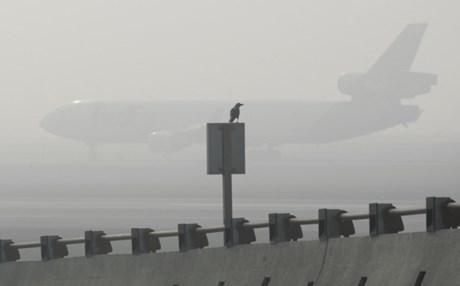 Θεσσαλονίκη: Καθυστερήσεις λόγω ομίχλης οι πτήσεις στο «Μακεδονία» - Συλλήψεις νωρίς το πρωί στον αερολιμένα