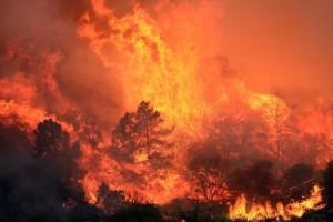 Καίγεται η Καλιφόρνια