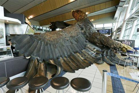 Σεισμός 6,2 βαθμών στη Νέα Ζηλανδία, «θύμα» και αετός του Hobbit