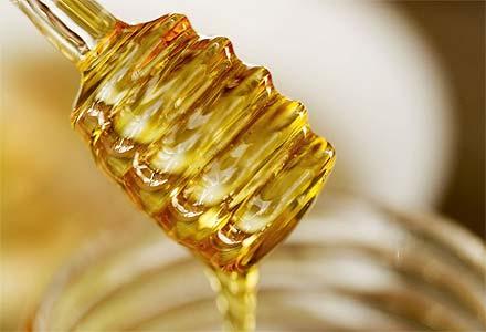Προβολή ντοκιμαντέρ «Κάτι παραπάνω από το μέλι»