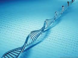 Σεμινάριο «Βιολογικές επιδράσεις και προστασία από μη ιοντίζουσες ακτινοβολίες»