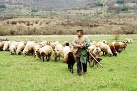 Δηλώνει τη συμπαράσταση στις διεκδικήσεις των κτηνοτρόφων