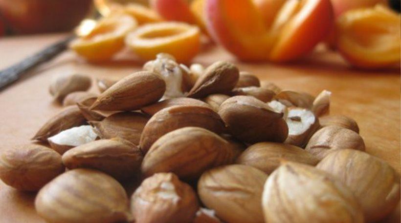 Συναγερμός από το Κέντρο Δηλητηριάσεων για τοξικούς ξηρούς καρπούς