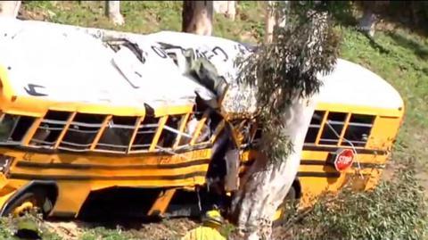 Σχολικό λεωφορείο έπεσε πάνω σε δέντρα στην Καλιφόρνια
