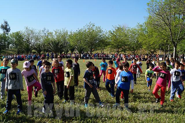 Αγώνες δρόμου Δημ. Σχολείων – «Σχολεία εν δράσει»