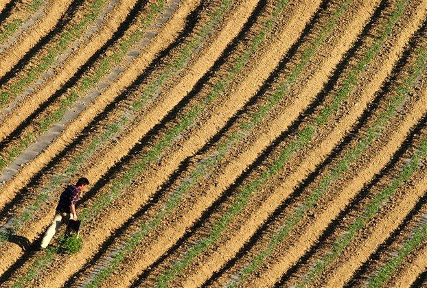 Ενημέρωση για αγροτικές ενισχύσεις