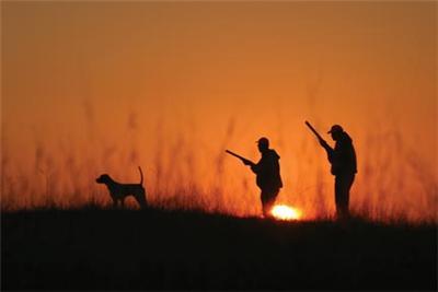 Σε αγορά ακινήτου προχωρούν οι κυνηγοί