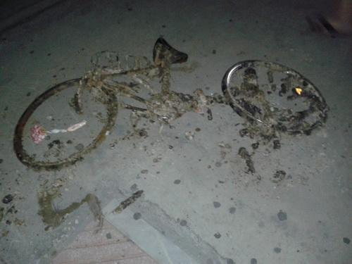 Θαλάσσιο ποδήλατο