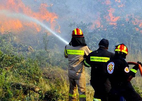 Τρεις φωτιές στη Μαγνησία ~ ΜΕ ΤΟΝ ΚΑΥΣΩΝΑ ΗΡΘΑΝ ΚΑΙ ΟΙ ΠΥΡΚΑΓΙΕΣ
