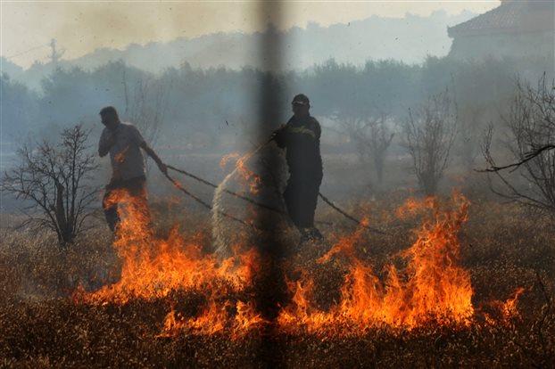 Πάνω από 40.000 στρέμματα κάηκαν ολοσχερώς σε Μαλεσίνα και νομό Λαρίσης