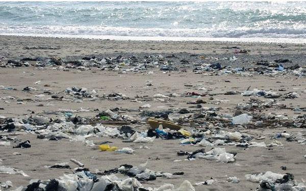 Επιτυχής καθαρισμός ακτών στην Περιστέρα