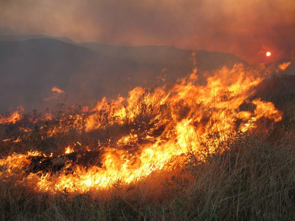Πυρκαγιά στον Αλμυρό