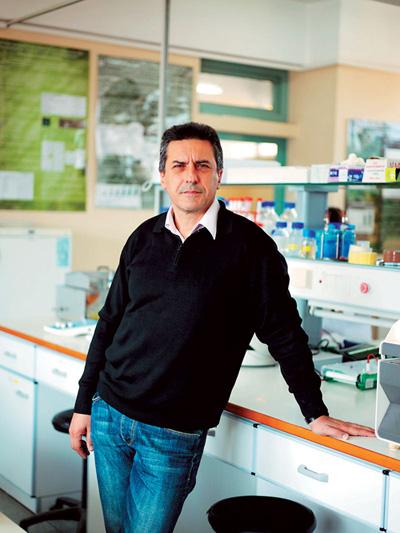 Διεθνές ενδιαφέρον για τα βιο - λειτουργικά τρόφιμα