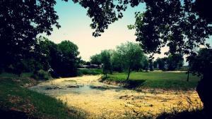 «Στράγγιξε» η λίμνη του Κεφαλόβρυσου στα Τρίκαλα