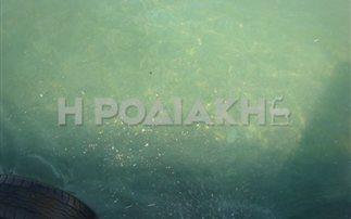 Εκτεταμένη ρύπανση με βοθρολύματα στη Ρόδο