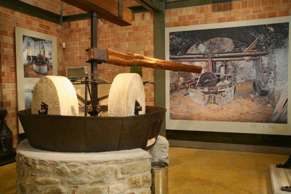 Εκδηλώσεις στο Μουσείο Ελιάς και Λαδιού Πηλίου