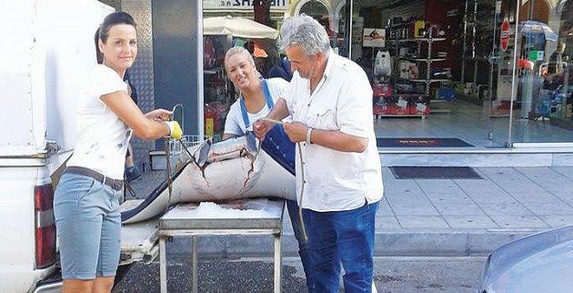 Σαλάχι για... ρεκόρ Γκίνες πωλείται σε ψαράδικο στα Τρίκαλα!