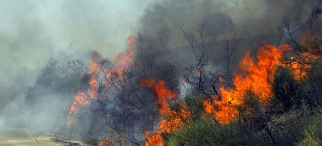 Καίει για τρίτη ημέρα η φωτιά στην Καλαμπάκα