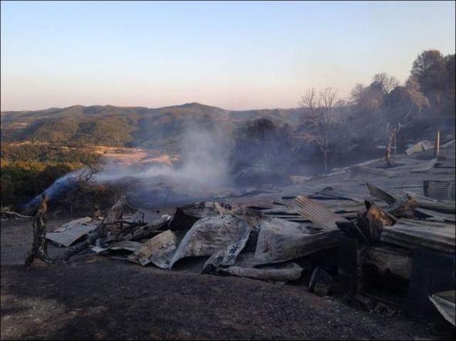 Πρωτοφανής οικολογική καταστροφή στα Τρίκαλα