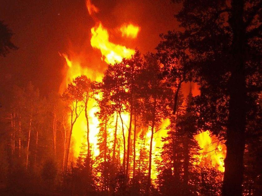 Για τρίτη ημέρα έκαιγε η φωτιά στην Ανάβρα