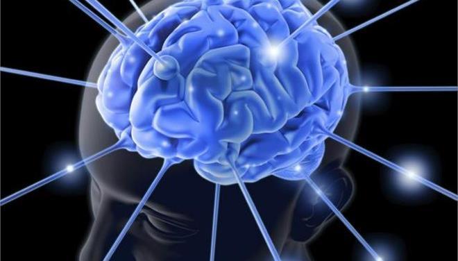 Υπάρχει ζωή ακόμη και με ένα μεγάλο κενό στον εγκέφαλο