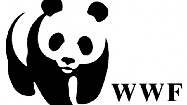 WWF: «Ραγδαία η περιβαλλοντική οπισθοδρόμηση της Ελλάδας τον τελευταίο χρόνο»